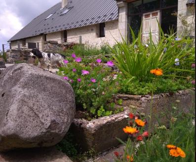 immobilier, international, maisons, chambres d'hôtes, la monssendie, cantal, Auvergne