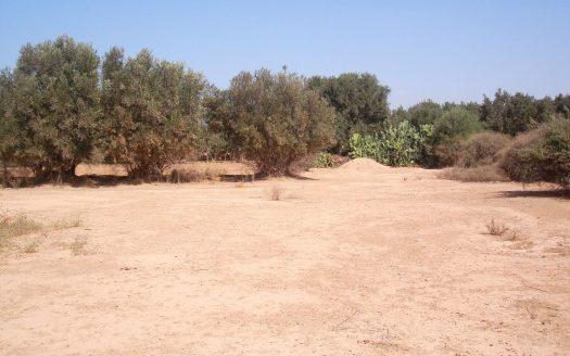 vente terrain maroc particulier Souss Massa
